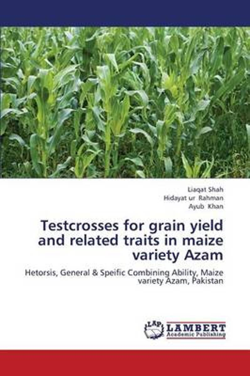Testcrosses for Grain Yield and Related Traits in Maize Variety Azam