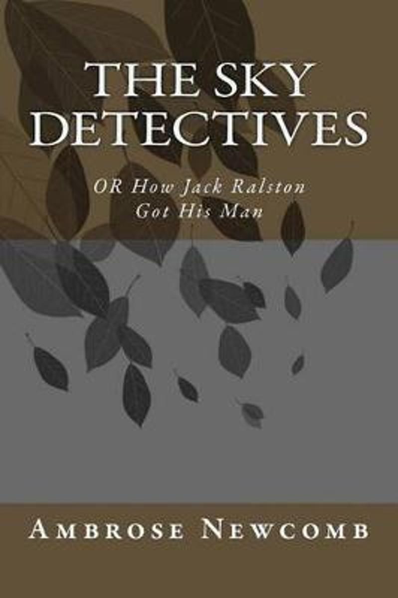 The Sky Detectives