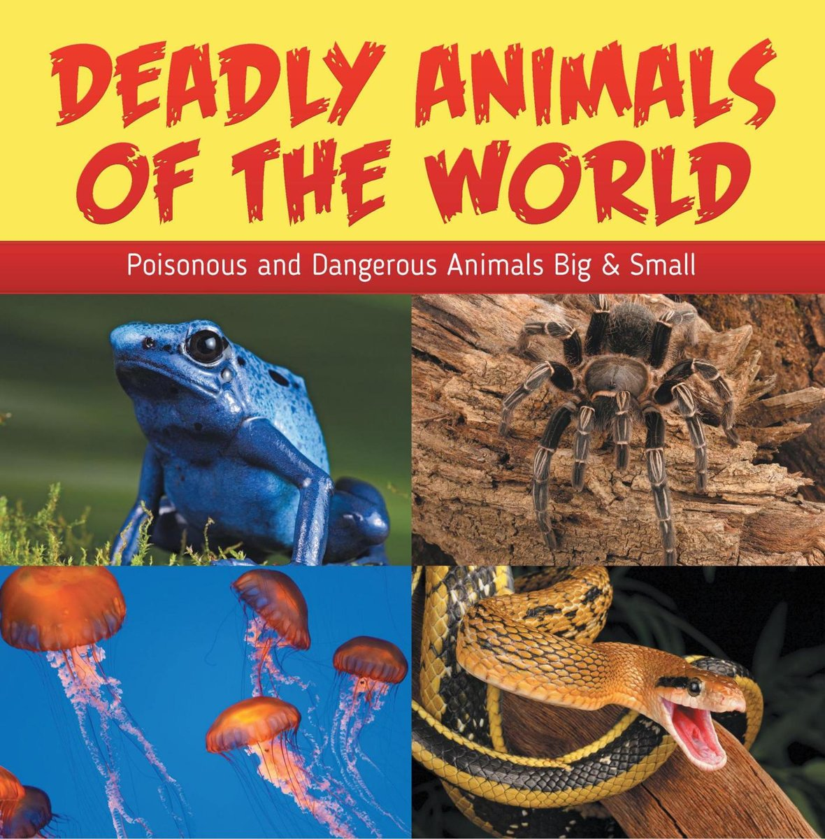 Deadly Animals Of The World: Poisonous and Dangerous Animals Big & Small