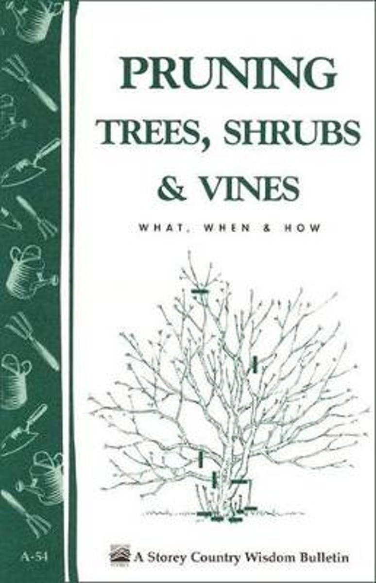 Pruning Trees, Shrubs and Vines