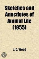 Sketches and Anecdotes of Animal Life